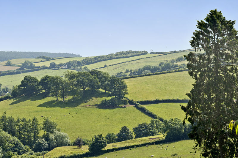 Things to do in Shropshire: The stunning Shropshire countryside is all around.