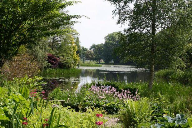 Glansevern_Gardens